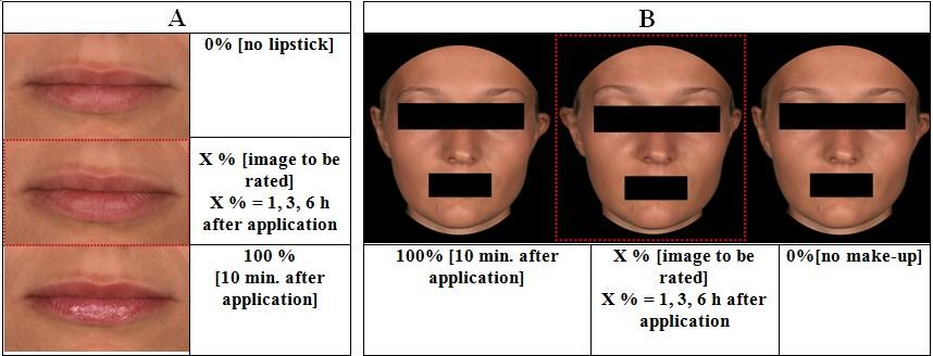 tween both products directly after application compared with untreated skin as a control (Figure 4 B). The makeup showed a higher covering power than the tinted day cream.