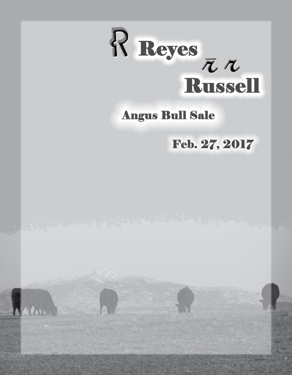 General Information: Sale Location: Sale will be held at the Reyes Ranch located 6 miles south of Wheatland on I-25, take Exit 73 west 1.5 miles to junction 312, then one mile north to MR Angus Ranch.