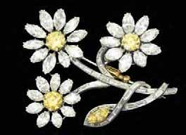 "Kaleidoscope Gems as Flowers:Daisy With its pure-white petals and sunny centre, the ""common daisy"" is anything but ordinary."