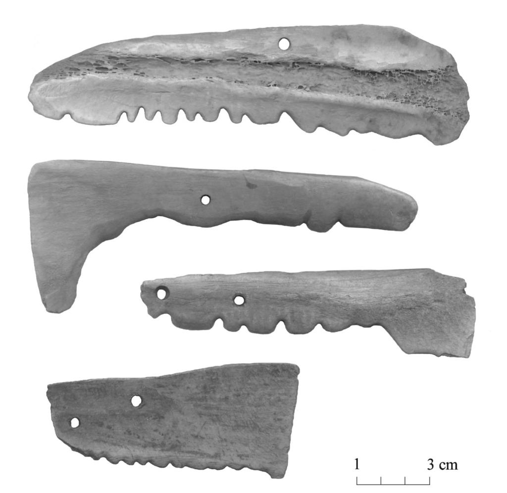 28 Fig. 4. Scapular tools with a notched edge from Asva, Estonia (AI 4012: 94; 4366: 689, 1391; 3994: 1599). Photos on figs 4 9 by.