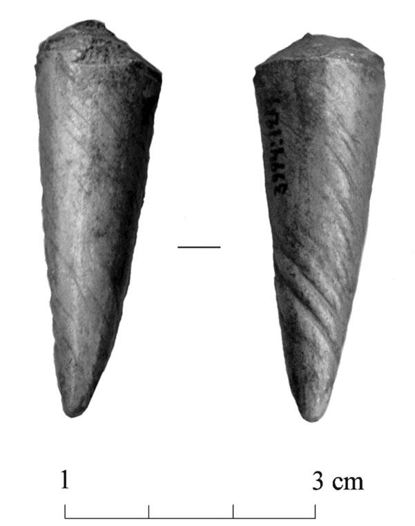 32 Fig. 9. One tine tip with spiral wear has been cut off probably the rest of the tine was used to make some other artefact (AI 4366: 1217).