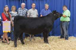 Two full sisters sold as highlights in 2015 and include the $18,000 PVF Hazel 4155 and the $16,000 PVF Hazel 4154, a female who went on to be shown quite successfully by Logan Boyd and was named