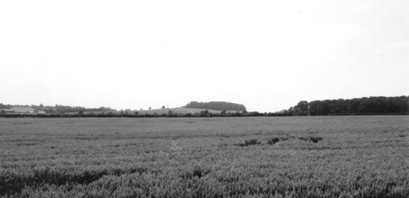 Fig. 6. View of the prominent Loveden Hill from the low ground to the north-west where discoveries suggest the presence of early Anglo-Saxon settlements.
