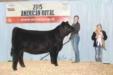 Fair Owned by Brittany Eagleburger OBCC Sadie 15ZB 2015 Reserve