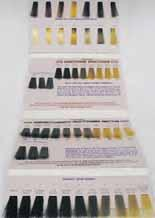 haircolors would be taught 63 The American Board of Certified Haircolorists provides a do it yourself color chart.