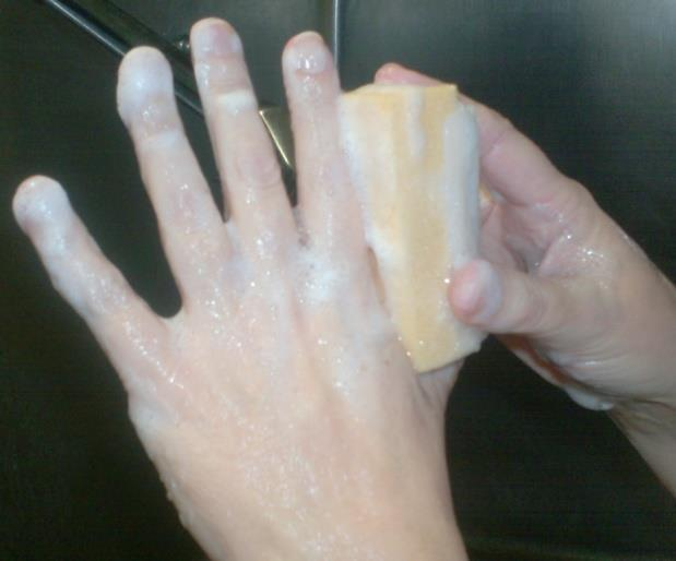 Step Two: Water based hand scrub Wet sponge and squeeze to work up lather.