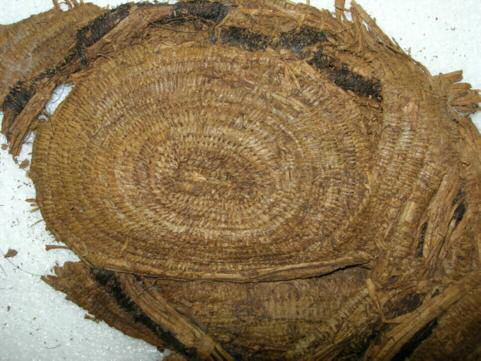 14 Basketry object The basket, made of lime bast contained most of the beads, the wooden ear studs and a flint flake.