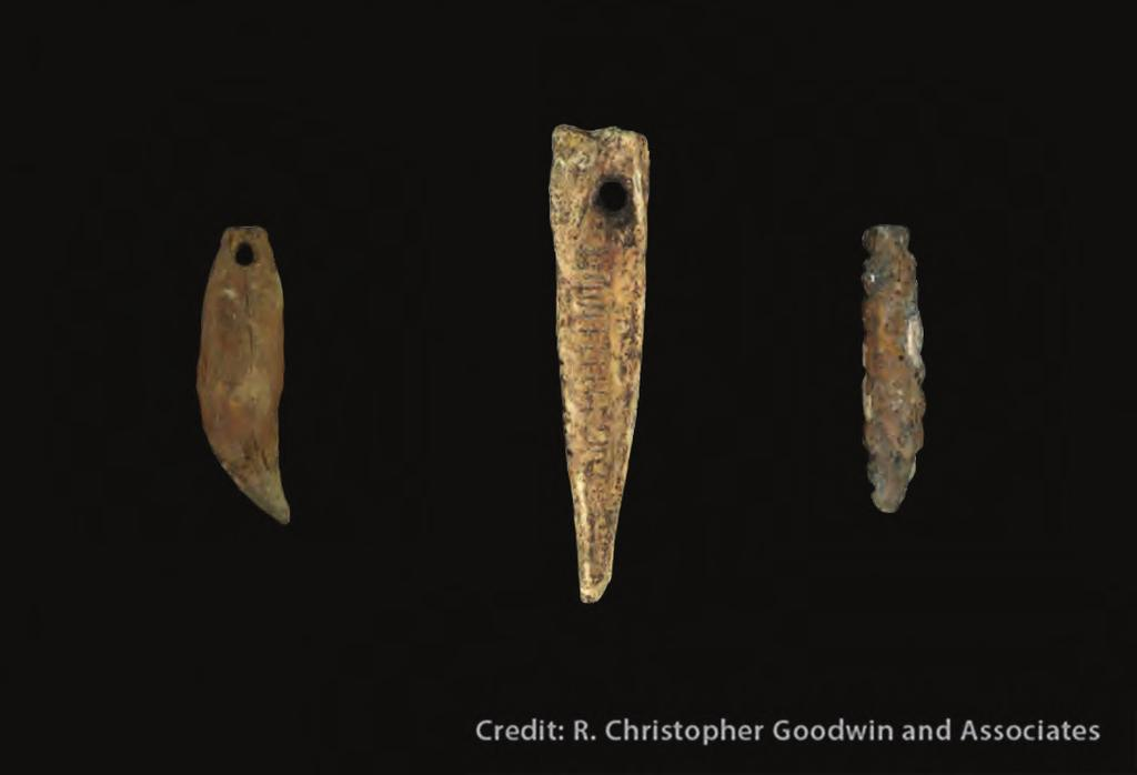 Pendants Researchers found three pendants at the Tchefuncte site, one made of a black bear canine tooth (A), one of a drum fish bone (B) and one of shell (C).