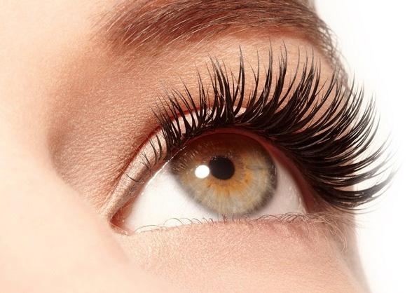 Eye Treatments Eyelash Tint... 11.50 Eyebrow Tint... 8.00 Lash & Brow Tint... 15.50 Brow Tint & Shape... 13.50 We require a patch test 24-48 hours before your tint treatment.