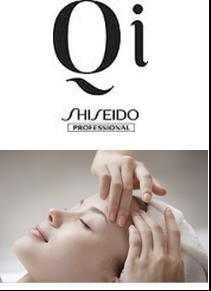 Qi Facial Treatments ESSENTIAL FACAL TREATMENTS Qi Sebum Control Facial.
