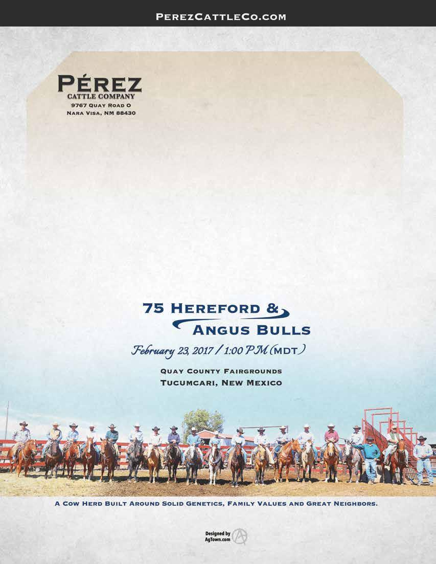 34 Pérez Cattle Company
