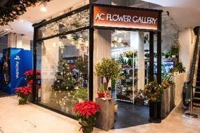 Attachment: Introduction of Exceptional Concept Brands at 9 Kingston Street AC Flower Gallery AC Flower Gallery imports various plants from around