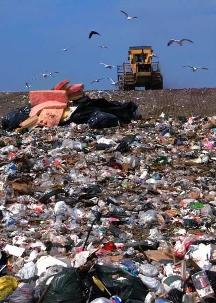 LANDFILL FACTS! Plastics require 100 to 400 years to break down in a landfill. Solid waste disposal is the third largest municipal government expense after police protection and education.
