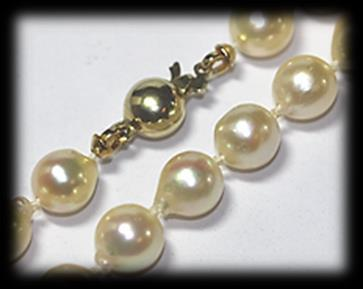 37 pearls strung and knotted to a length of 45cm onto a 9 carat yellow polished gold Signoretti clasp. Mass: 46.