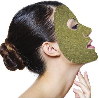 LATEST ACTIVE INGREDIENT LAUNCHES Leaf mask 31 TECHNATURE M10E info@tech-nature.
