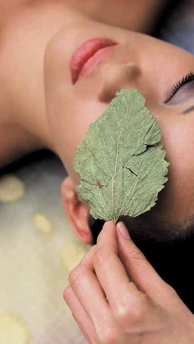 honey & chocolate detox ritual eco-green body treatment organic facial & body wrap Enjoy an urban retreat in our warm and welcoming sanctuary, and experience a rejuvenating, eco-conscious approach to