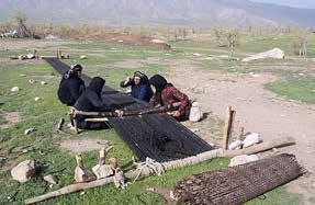The structure and the social system of nomadic tribes in Iran in general and the tribes of west central Zagros, in particular, is based on a kinship system and patriarchy.