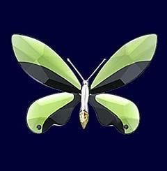 Unknown Product Name Object Butterfly Anamosa, moss