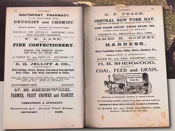 Scavenger Hunt: Open a Shop! Find this the advertisement. What are 2 things that were sold during the 1800s?