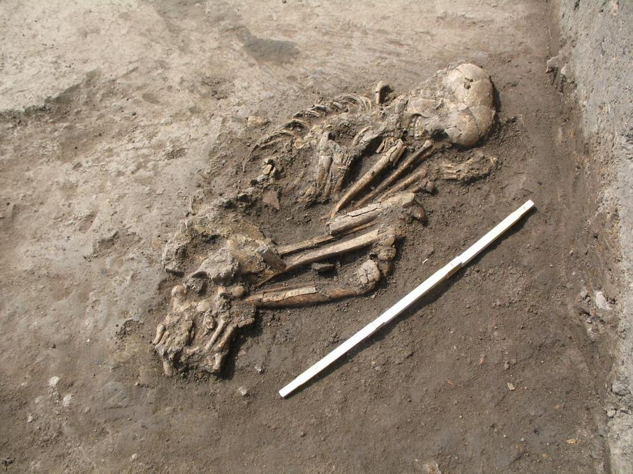 Figure S1.6: Picture of the Early Neolithic grave no. 1 from Cotatcu.