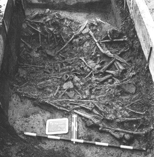 Later Prehistory to the Bronze age: 1. The Emergence of warrior societies the ditches, several bones having no correct anatomical position and being mixed with animal bones.