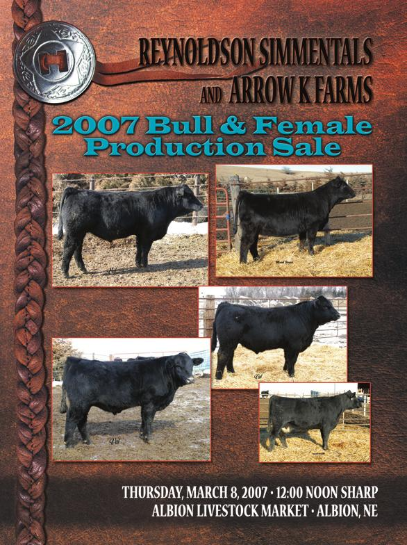 Selling 10 head of Simmental and Sim-Angus