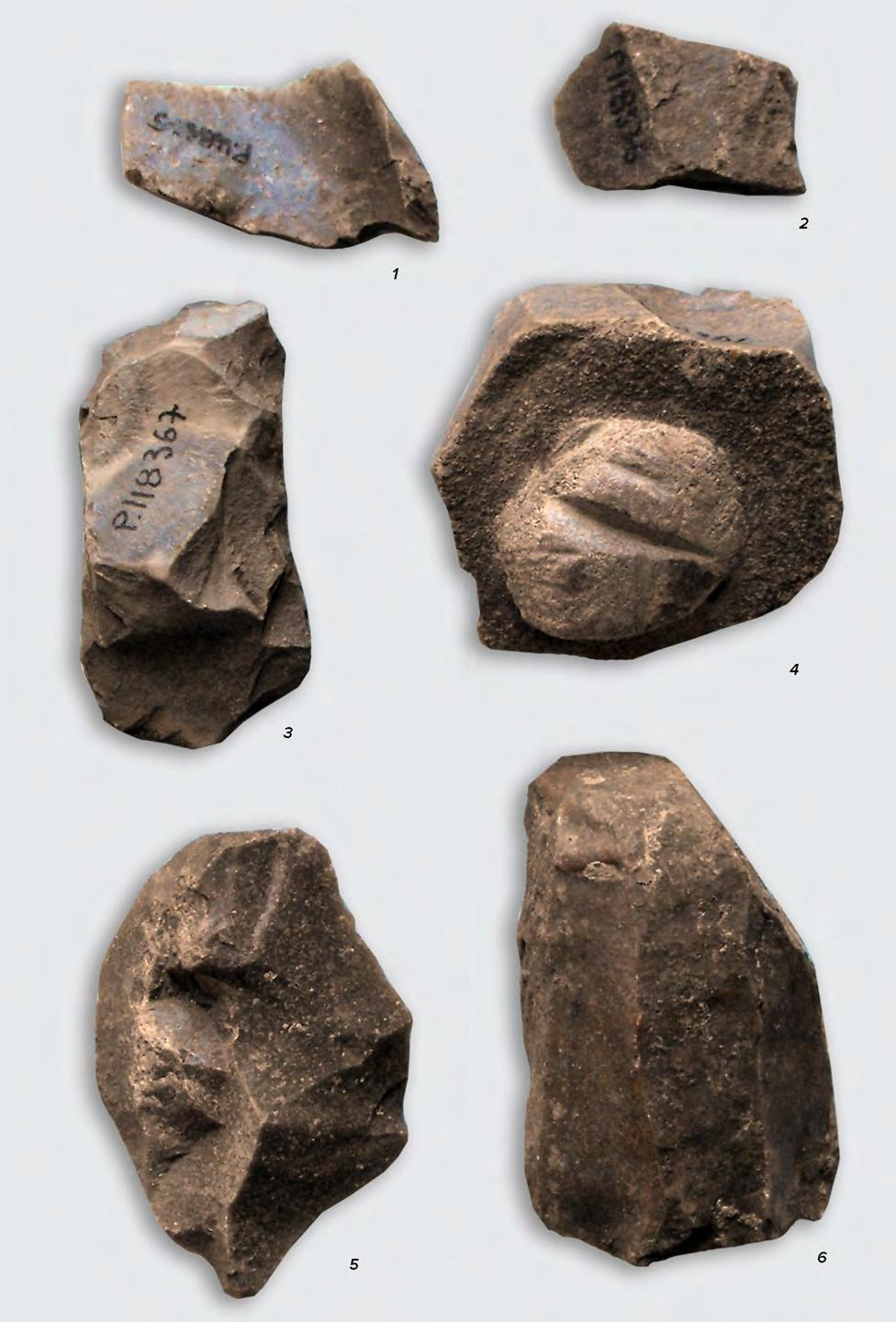 TOOLS, ARMS, ADORNMENTS AND OTHER ARTIFACTS 99 Fig. V.3.