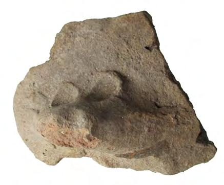 Paul 2007; b) fragment with a mouse from Surface E.