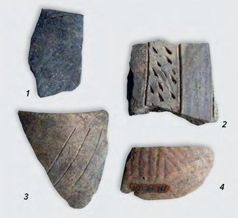 paste, elements of the Vinča A phase (fig. IV.21.