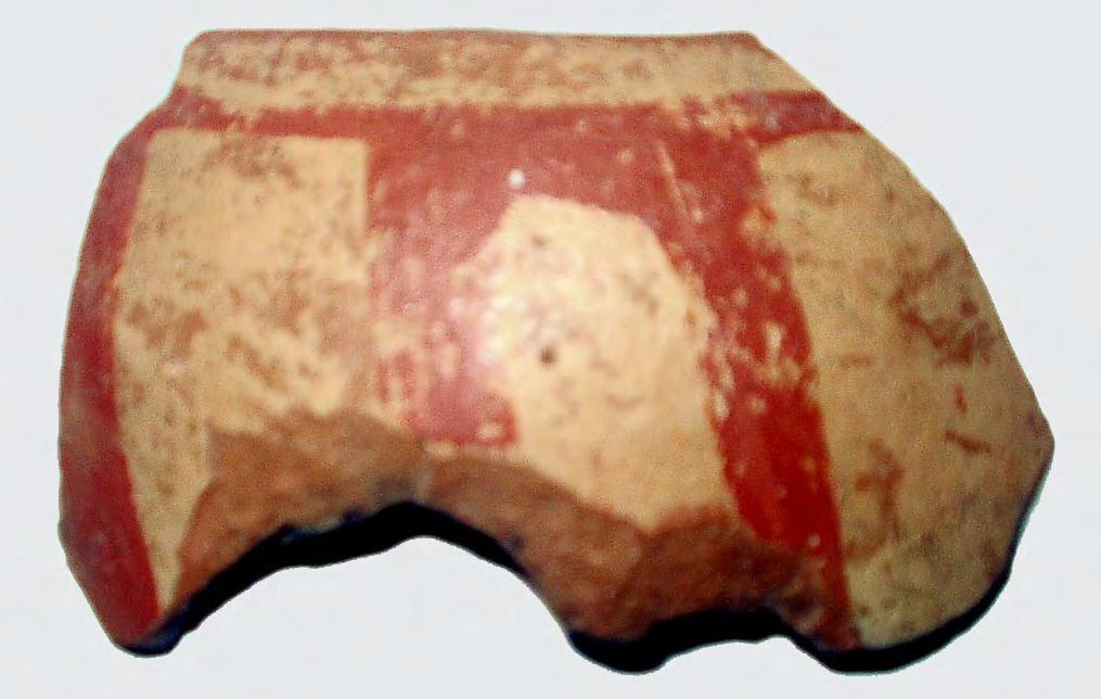 POTTERY 79 Fig. IV.