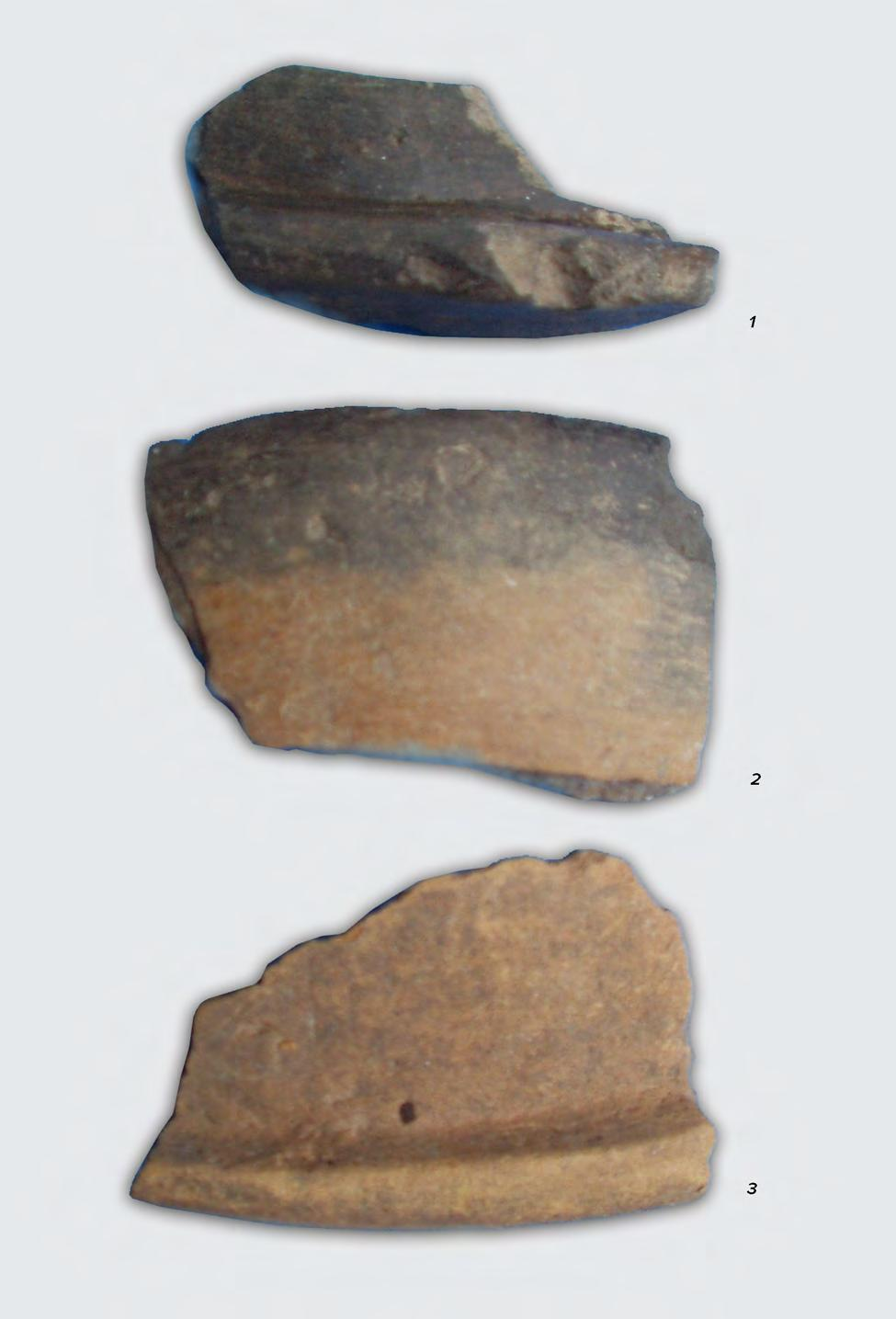 THE STUDY AND EVOLUTION OF TĂRTĂRIA POTTERY 89 Fig.