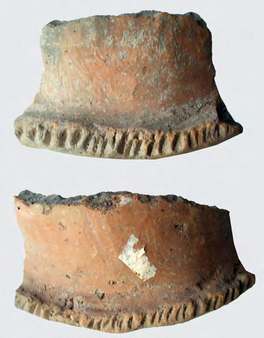 In Surface A ( 90 115 cm, IN 14707) a pot was found made of black paste, with pebbles in the mixture and a lobed decoration on the external margin of the lip.