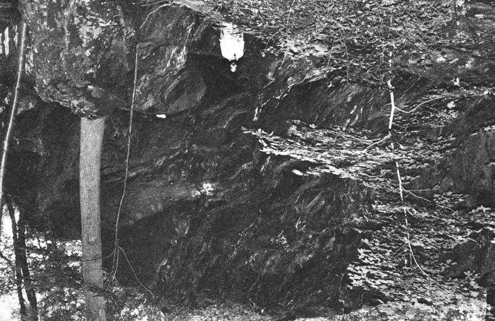 No. 88, Spring, 1984 9 A LATE ARCHAIC CACHE FROM THE OSSINING ROCKSHELTER Stuart J.