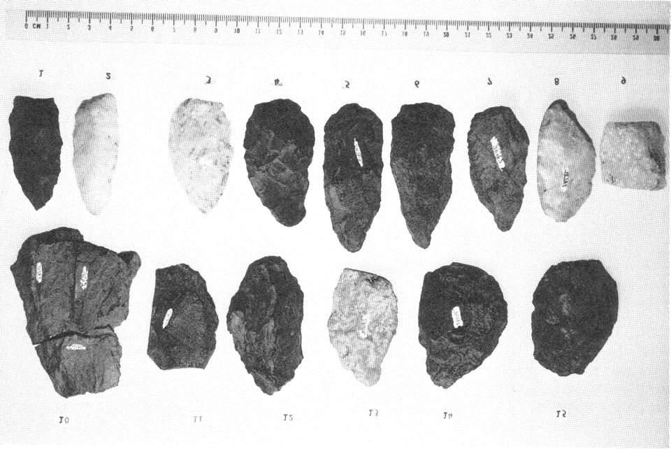12 THE BULLETIN Figure 4. Flakes and pre-forms Most unusual is the long, thin point (#1), which has been identified as a Lackawaxen Straight Stem.