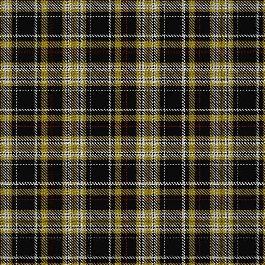 MAD FOR PLAID! MU TARTAN TURNS 10! June-August 2016 2016 marked the 10 th anniversary of the Mizzou Plaid!