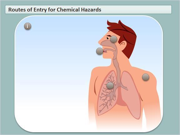 1.6 Routes of Entry for Chemical Hazards Click on parts of the human body to review how controlled products can enter your system, and what preventative measures you should take.