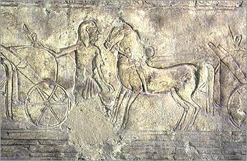 Figure 14: Horse, groom and chariot, Tomb of Meryra, no.