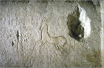king as he rides past Photo: The Amarna Project Figure 17: Entrance to tomb number 25, The God s Father, Ay Figure 16: The