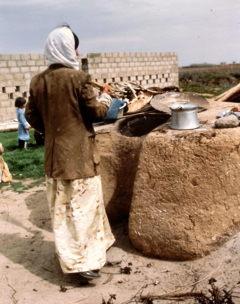 At Amarna, data from initial excavations indicated that there were few ovens in smaller domestic houses such as those at the Workmen s village.