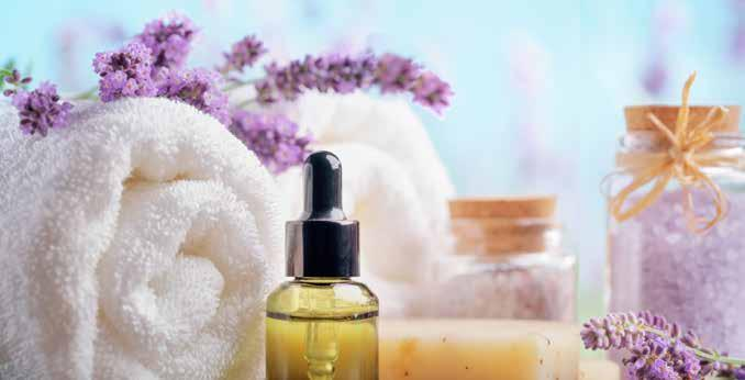 3. The Natural & Organic Cosmetics (NOC) industry With initial explanations out of the way, Beautyworld Middle East takes a look at the NOC industry which has stormed into the beauty and personal
