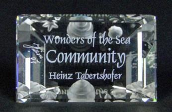 Plaque for Community Swarovski code 898130 Product