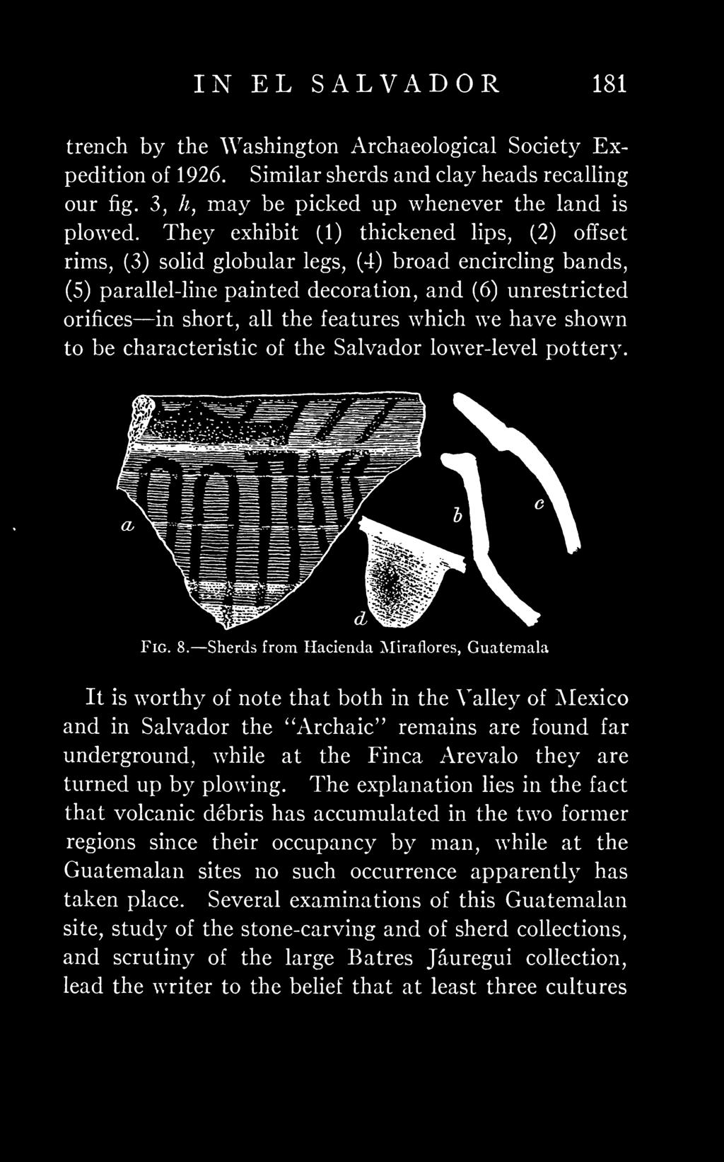 which we have shown to be characteristic of the Salvador lower-level pottery. Fig. 8.