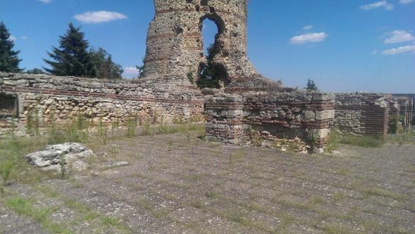 The Vidin archaeological association responsible for the region has locked the site to prevent damage, but