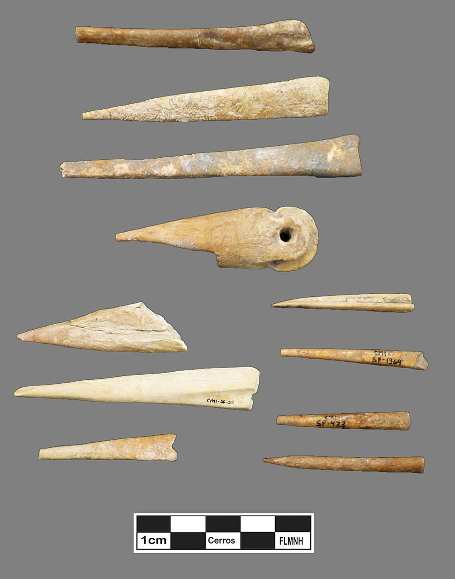 Part of Cerro Maya s fortune came from the ancient Miscellaneous Deer Bone Awls from the Cerro Maya Collections inhabitants ability to take advantage of the wide variety of animal species from the