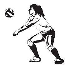 Beginner s Guide to Volleyball By Kareena 1. Bump (also known as pass): Hold your arms out, palm facing upward.