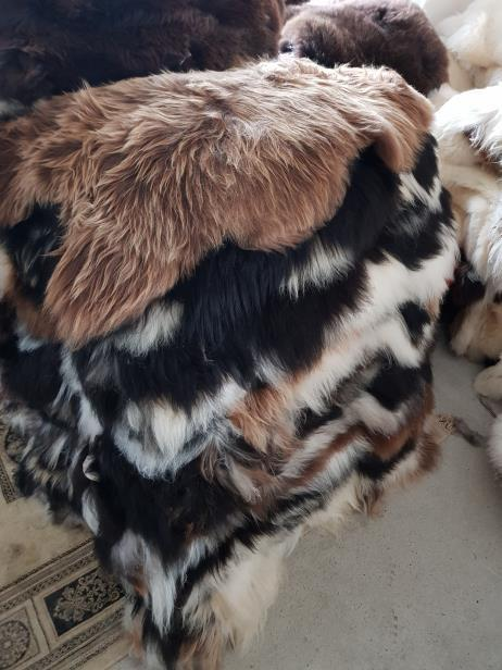 11.Icelandic sheepskins Mouflon : With straight or curly wool These are some of the most beautiful skins dyed with high quality tanning agents, which give the wool its characteristic