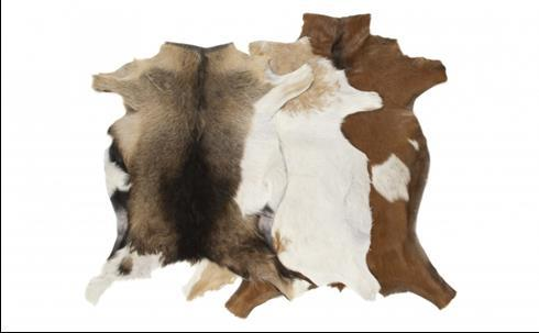 14. Decorative goatskin rug : All our GOATSKINS are imported from Holland. We are proud of our reputation for putting the customer first in every area of our operations.