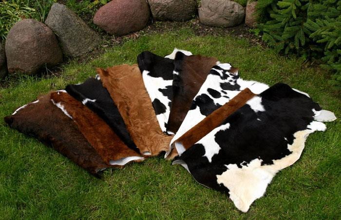 16.Decorative calfskins : Calfskins give special emphasis to any charming place.