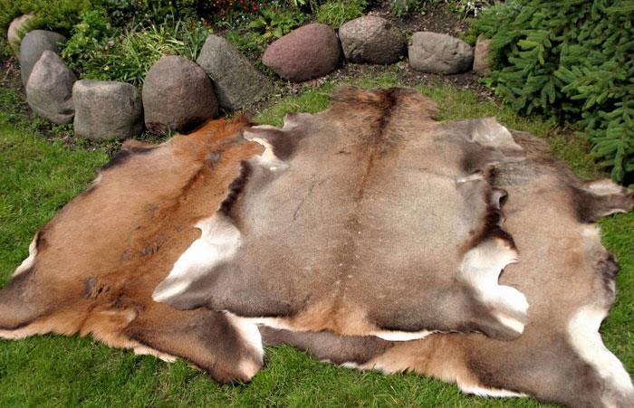 17.Decorative leather from deer : Deer skin