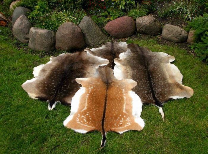 18.Decorative leather from fallow deer :